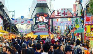 Japanreis voor selecteren van de beste koi