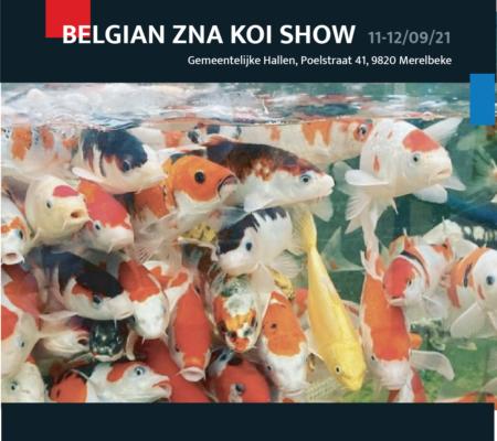 Unikoi op Belgian Koi Show